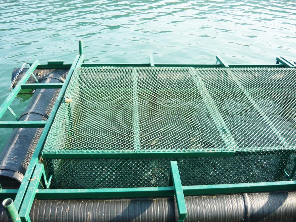 plastični ponton za ribnjak