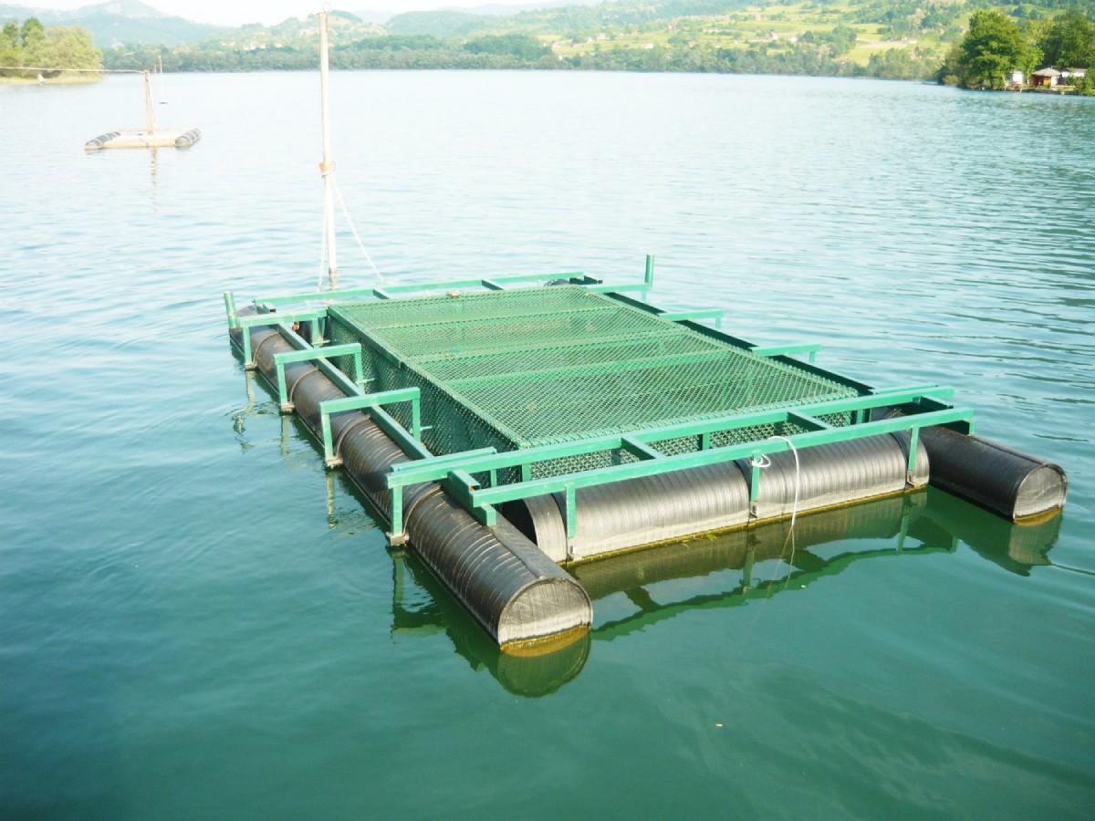 plastični ponton za ribnjak na reci